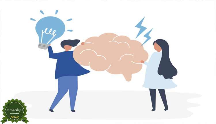 تغذیه در عملکرد مغز